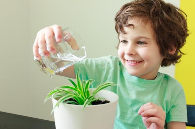 Il ragazzo del bambino riccio in maglietta blu sta sorridendo e innaffiando la pianta d'appartamento in vaso in casa