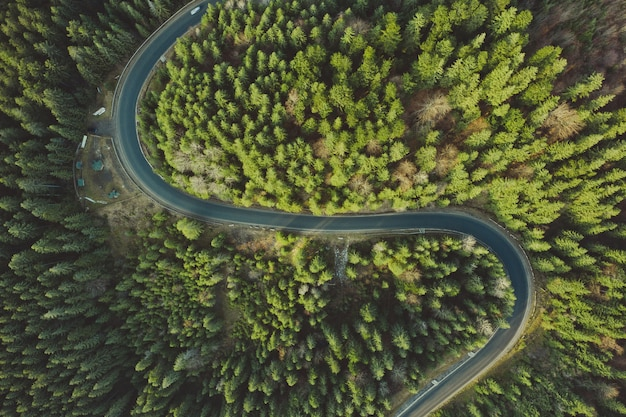 Strada aerea curva da un drone. strada asfaltata forestale in montagna vicino a pino e abete rosso