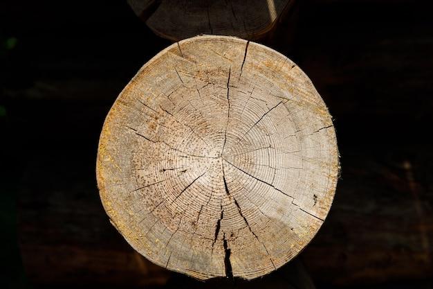 Taglio di un primo piano del registro in una casa di legno. foto di alta qualità