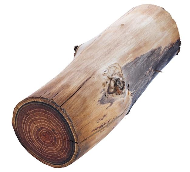 Un taglio di un tronco di legno con una trama e anelli annuali. isolato