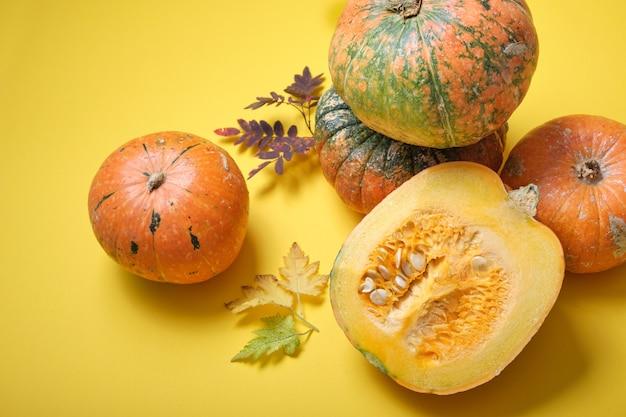 Taglia la zucca e diverse zucche su uno sfondo giallo, vista dall'alto, foglie autunnali e zucche con escrescenze sulla buccia