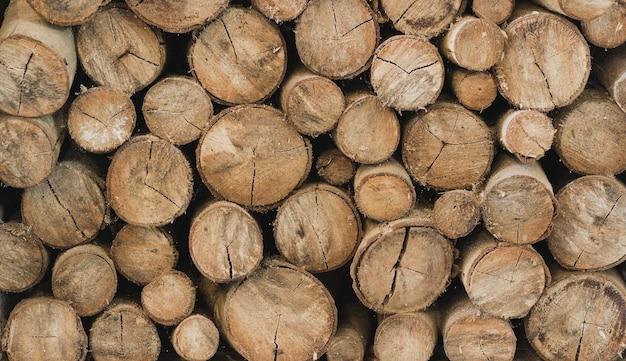 Tagliare il fondo del modello di registro di legno sull'industria del materail grezzo