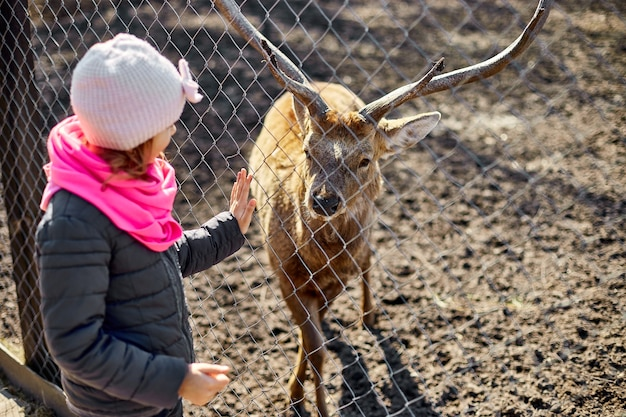 Carino cervo adulto lecca la mano di una bambina, bambino, cervi che vivono nel campo naturale, zoo, concetto di fauna selvatica ed ecologia, stile di vita urbano relax, hipster in vacanza con animali da fattoria.