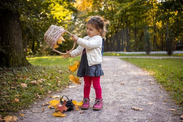 Bambina carina che gioca con cesto e foglie d'acero autunnali nella foresta autunnale.