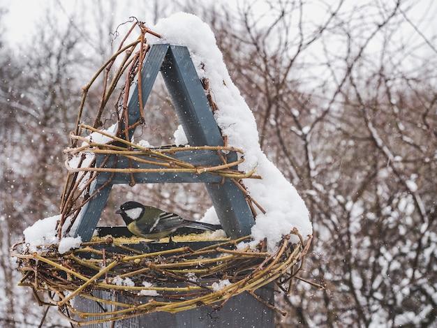 Simpatici, bellissimi uccelli in una mangiatoia di vimini.