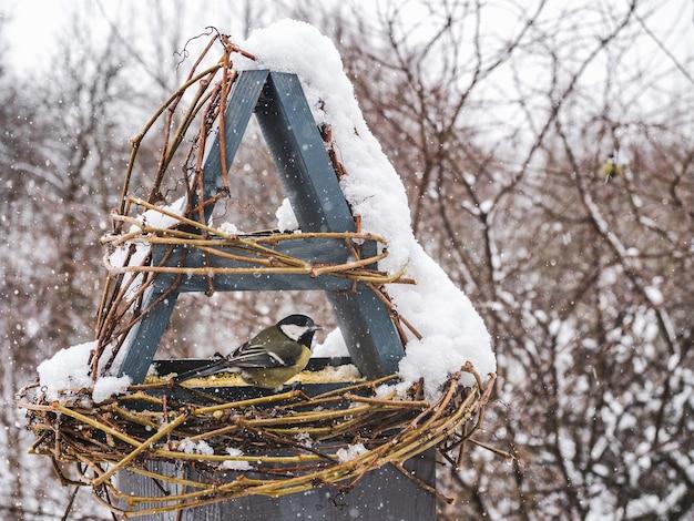 Simpatici, bellissimi uccelli in una mangiatoia di vimini