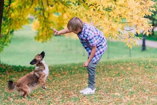 Ragazzo sveglio che gioca e cammina con il suo cane nel prato.