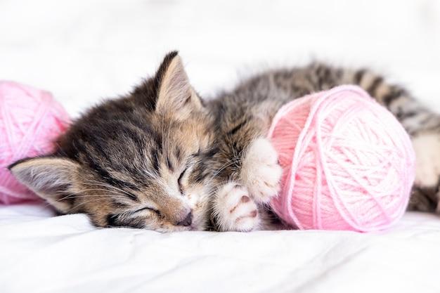 Gatto sveglio che dorme con matasse di palline rosa e grigie di filo sul letto bianco