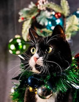 Simpatico gatto con decorazioni natalizie sul petto.