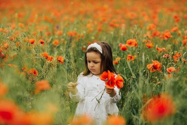 Ragazza carina bambino nel campo del papavero con bouquet di papavero rosso in mano