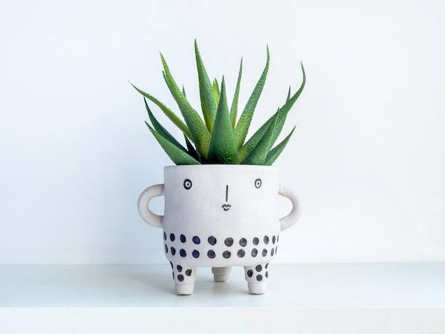 Vaso per piante in ceramica con viso carino con pianta succulenta verde su ripiano in legno bianco isolato su parete bianca. piccola moderna fioriera in cemento fai da te decorazione alla moda.