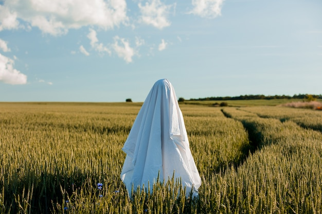 Fantasma carino in un lenzuolo su un campo di grano