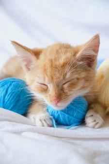 Simpatico gatto allo zenzero e diverse palline di filo colorate, il gattino sta dormendo sul letto