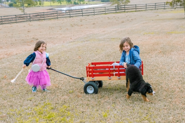 Ragazza carina tirando la sorella e il cucciolo di cane in un vagone rosso sorelline divertendosi sul cortile