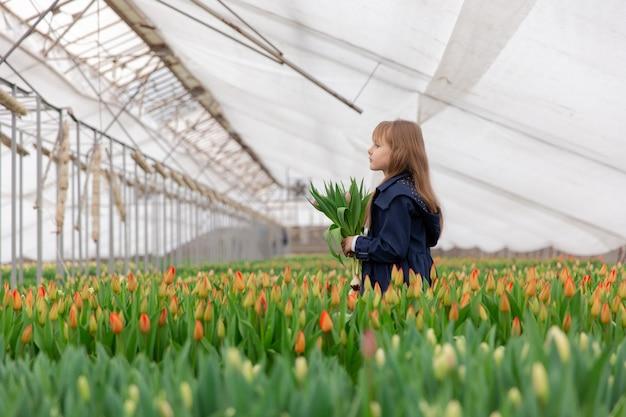 Ragazza carina con tulipani con i capelli biondi in primavera in una serra con tulipani in crescita