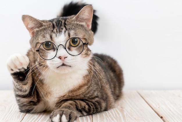 Simpatico gatto grigio con gli occhiali Foto Premium