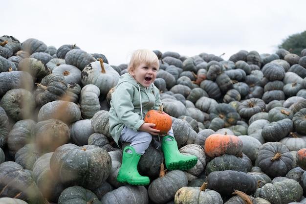 Ragazzo caucasico felice sveglio del bambino che si siede sul mazzo di zucche. stagione autunnale, raccolto di zucca.