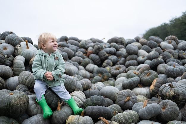Ragazzo caucasico felice sveglio del bambino che si siede sul mazzo di zucche raccolto di zucca di stagione autunnale