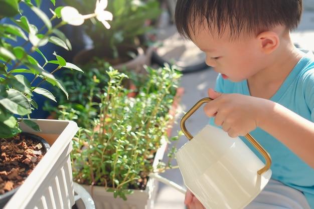Piccole piante di innaffiatura asiatiche felici sveglie del bambino del ragazzo del bambino con l'annaffiatoio in giardino a casa di mattina