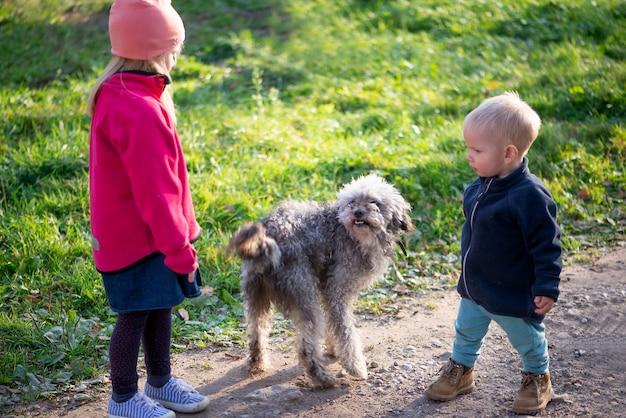 Bambina sveglia e bambino ragazzo e cane che giocano all'aperto