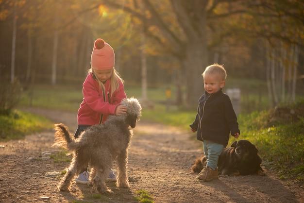 Bambina sveglia e bambino ragazzo e cani che giocano all'aperto