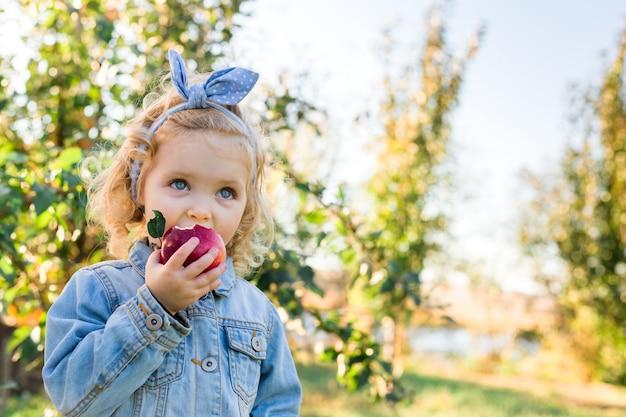 Bambino sveglio della bambina che mangia mela rossa organica matura nel frutteto di mele in autunno