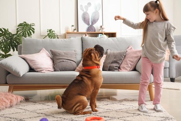 Bambina sveglia che gioca con il cane divertente a casa