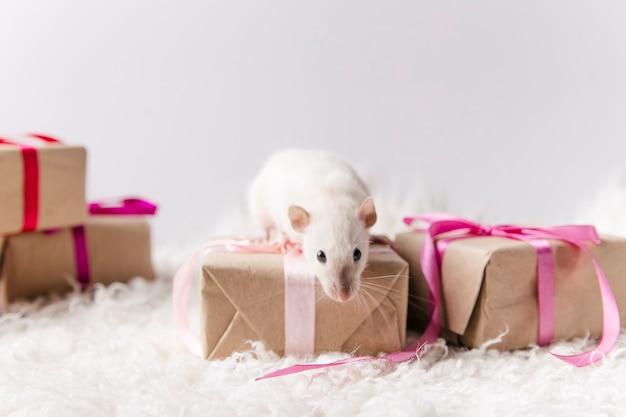 Simpatico topo su uno sfondo di capodanno