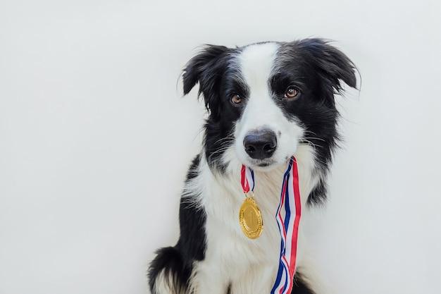 Simpatico cucciolo con medaglia d'oro in bocca