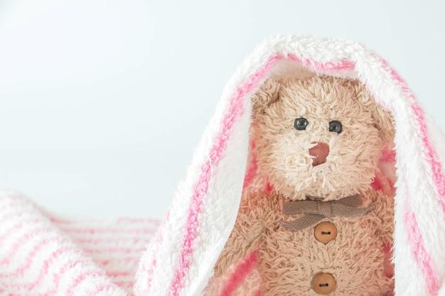 Simpatico orsacchiotto gioca a nascondino e cerca