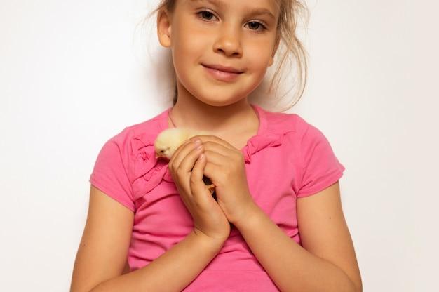 Pulcino giallo neonato minuscolo sveglio del bambino nelle mani della ragazza del bambino