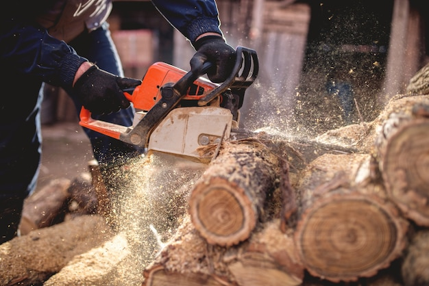 Taglio del legno con la motosega al cortile, professione di boscaiolo.