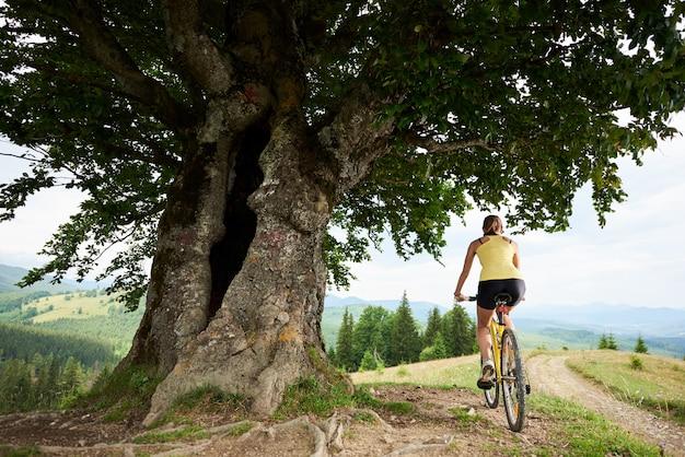 Ciclista in sella a mountain bike