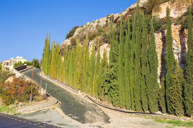 Fila di cipressi e strada in un paesaggio rurale, l'europa.