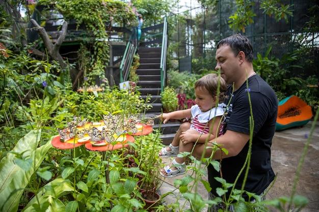 Papà e figlia guardano le farfalle, il padre tiene tra le braccia una bambina piccola nella farfalla
