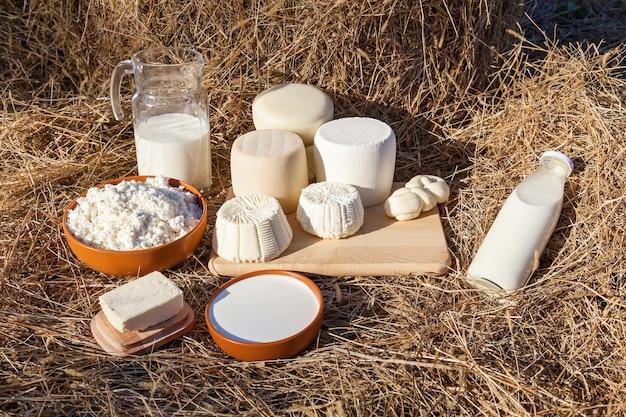 Latticini latte, panna acida, formaggio e burro su uno sfondo di fieno. vari tipi di formaggio, panna acida e ricotta in una tazza di argilla, latte in bottiglia e un barattolo. prodotti lattiero-caseari ecologici
