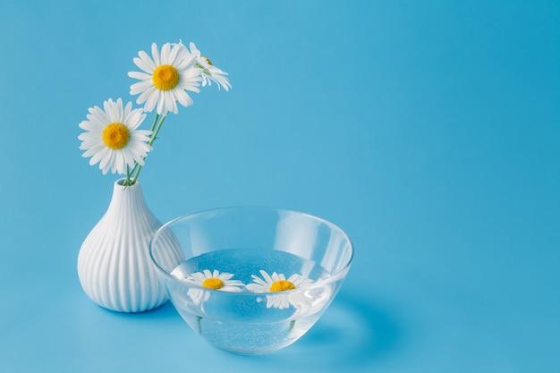 Margherite in una ciotola di acqua, concetto spa