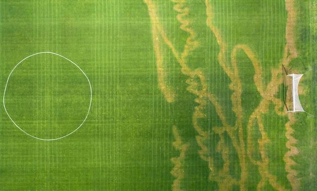 Erba del prato inglese danneggiata sul campo di calcio.