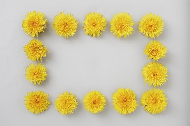I fiori di tarassaco sono incorniciati su uno sfondo grigio con spazio per la copia per l'invito o il testo del banner. concetto di concetto minimale primaverile e disposizione piatta.