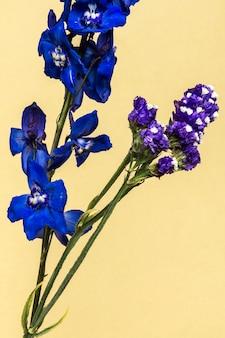 Fiore di delphinium blu scuro con foglie su fondo crema