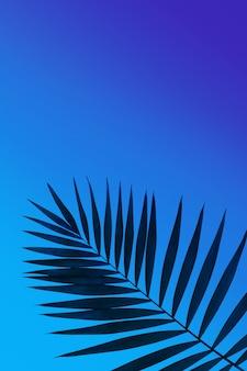 Foglia di palma tropicale verde scuro isolata su sfondo sfumato blu viola. design per biglietti d'invito, volantini. modelli di design astratti per poster, copertine, sfondi con copyspace per il testo.
