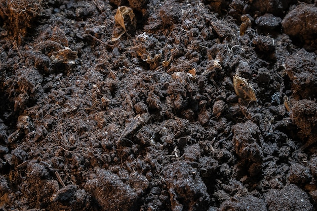 Texture scura di terra sporca nera.
