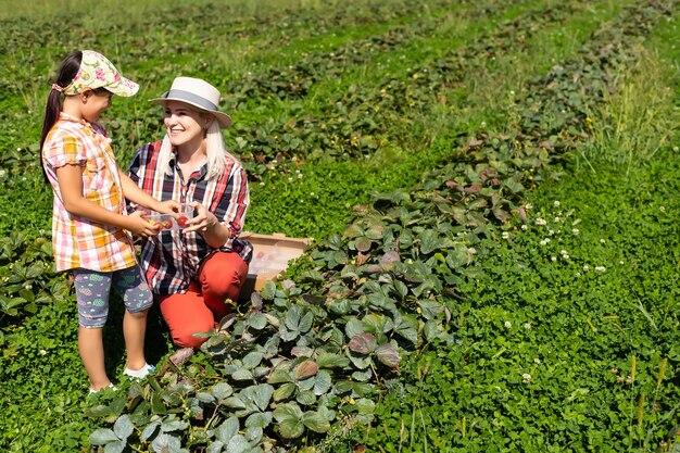 Figlia e madre stanno lavorando nell'orto, fragole raccolte