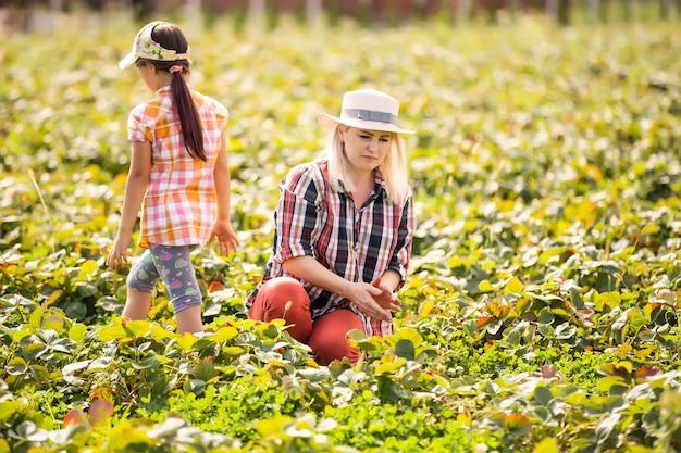 La figlia e la madre stanno lavorando nell'orto, hanno raccolto le fragole