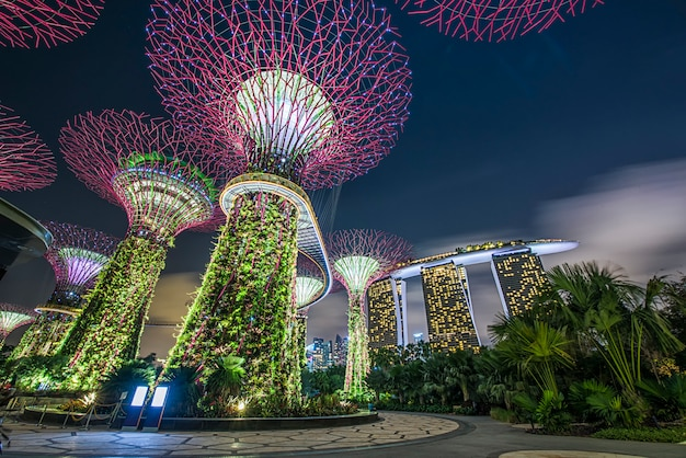 Vista di giorno del boschetto di supertree, della foresta pluviale & della cupola del fiore ai giardini dalla baia il 30 gennaio 2015 a singapore
