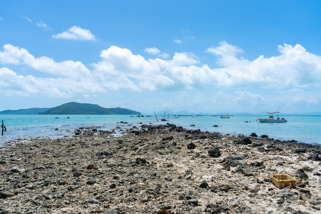 Detriti di corallo sulla spiaggia vicino all'acqua. spiaggia di corallo.