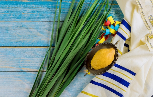 Decorazioni festa ebraica di sukkot con quattro specie etrog, lulav, hadas, arava