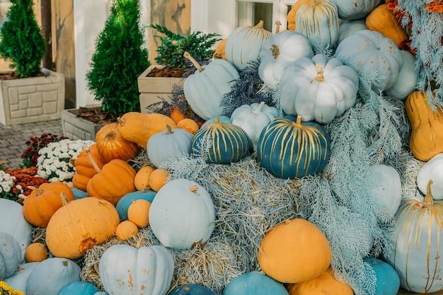 Zucche decorative blu e arancioni fiori all'aperto e esterni della facciata con decorazioni di halloween all'aperto