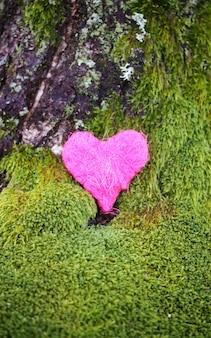 Cuore colorato decorativo su muschio verde nel parco.