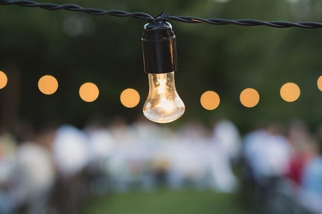 Luci decorative della stringa esterna che appendono su un albero nel giardino di notte
